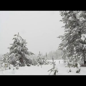 Soft Piano Music For Relaxation || Snowing Background  Relax Music || Meditation music || yoga music