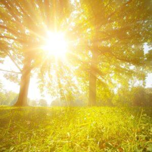 Beautiful Relaxing Music ➤ Healing Music for The Body & Soul ➤ Meditation Music. Balance & Harmony