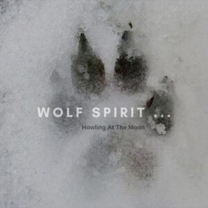 Wolf Relaxing Music