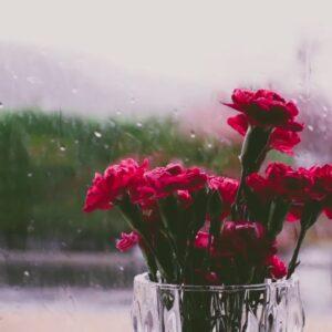heavy rain on the windowsill.24/7 .The sound of heavy rain can relax, sleep, study, insomnia