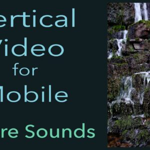 Nature Sounds-8hr. Forest Birds Singing-Waterfall Sound-Relaxing Calm Sleep-Vertical Mobile Video