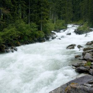 💤 Calm River Sounds w/ Rain in Mountain Forest Austria for Relaxing, Sleeping & Spa