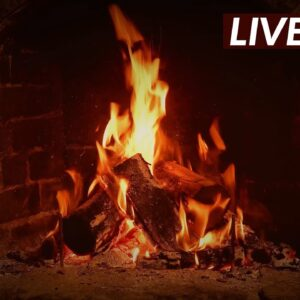 🔥 Crackling Fireplace w/ Blizzard Storm Sounds for Sleep, Relaxation & Spa