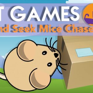 Games for Cats - HIDE & SEEK Mouse Chase (Extra-Fun) 🐭