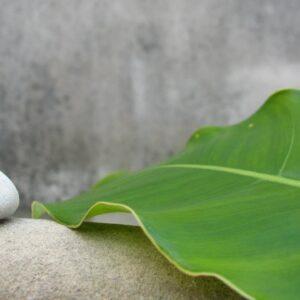 Musica Relax: Musica Calma Strumentale per Rilassare e Ristabilire l'Equilibrio Interiore ❈826