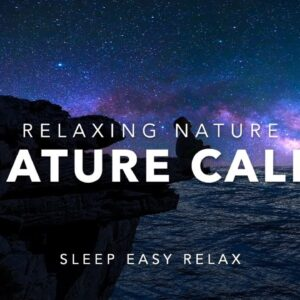 Instant Nature Calm, Beautiful Relaxation Dream Music (Natural Calming Sleep Music)