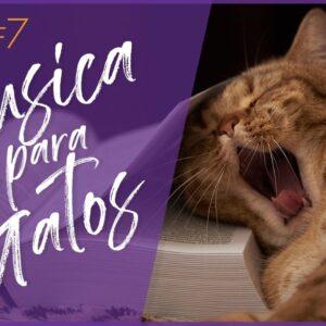 Relax My Cat - Instrumentais Suaves para Acalmar Instantaneamente o Seu Gato!