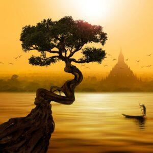 417Hz + Tibetan Flute Music + OM Mantra | Destroy Negative Thoughts, Negative Energies