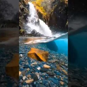 Relaxing Nature Sound #SHORTS